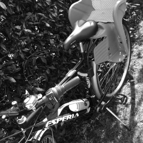 In bicicletta..
