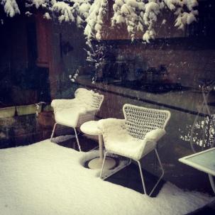 Neve in giardino
